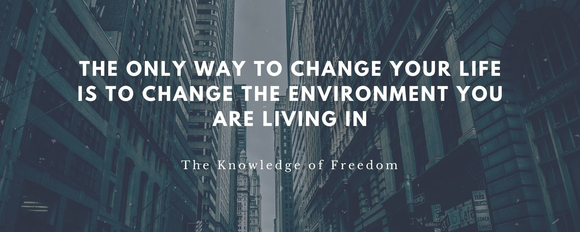 Quote which reads the only way to change your life is to change the environment you are living in